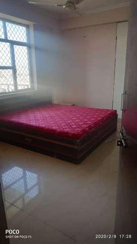 Near Shastri Nagar Pal Road 3 BHK Fully Furnished Flat For Rent