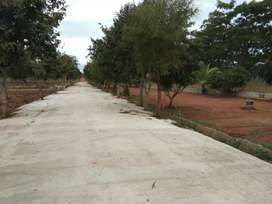 SH-74 Road Facing Layout located at Nelamangala to Doddaballapur road