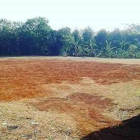 Jual tanah luas 3000m dekat stasiun serpong