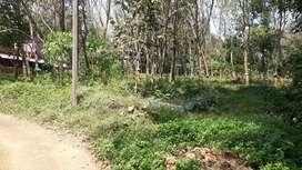 1.EKKAR ORIGINAL LAND NEAR MANNOOR 69000 PER CENT PRICES HOUSE PLOT