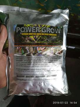 power growh rumah bakteri aquascape