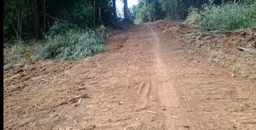 Jual Tanah 2 Hektar 0