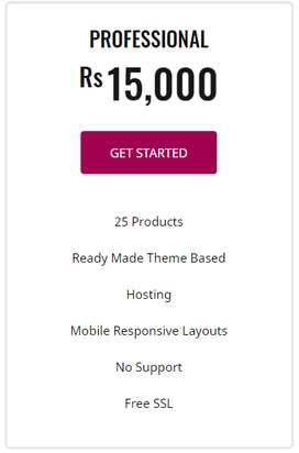 eCommerce Website - affordable Price