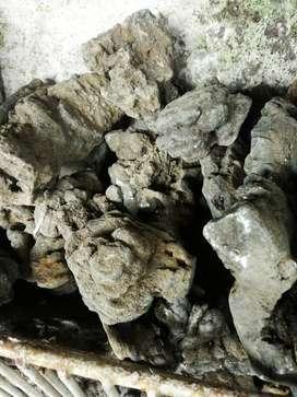 Batu besi aquarium /aquascape