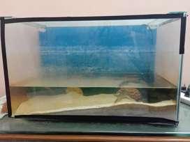 Aquarium with 10 kg wight sand, 2 coral