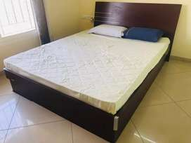 Branded Beautiful Queen Size Bed