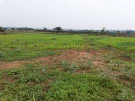 Agri Land, small Farm House on foothills for Sale 2 hours from Delhi
