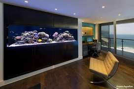 Saltwater/marine Aquarums now available