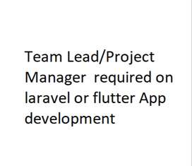 Team Lead/Project Manager required (Laravel or Flutter)