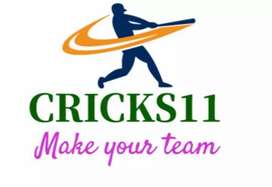 Reception and HR post available in CRICKS11