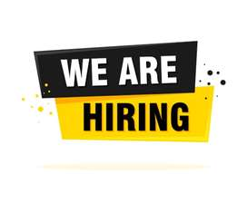 Carpenter and painter required
