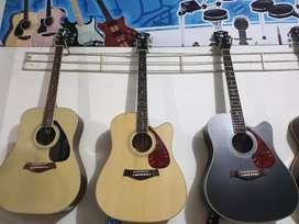 Gitar Jumbo Stanlies