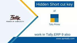 Tally Accounting services ( this add not for job)
