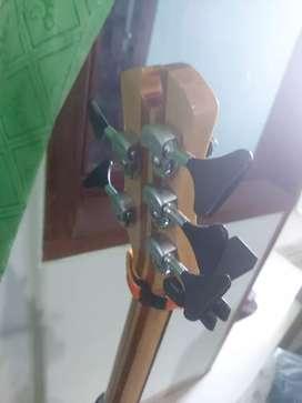 Custom Bass 5 senar