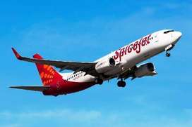 Spice jet Airlines Hiring- Airport Job