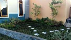 Jasa tukang taman rumah-jual tanaman pelindung dan rumput taman