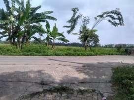 Dijual Murah Tanah 1 Ha (SHM)nempel jalan cor di Sukamulya Tangerang