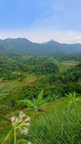 Tanah dengan view terbaik diseputar Rawapening, cocok untuk Villa.