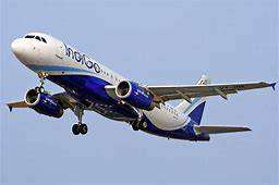 Indigo Airlines - Airport Job - Ground Staff Job - High Income Job (bl