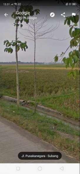 Tanah Strategis Bangun Gudang Pinggir Jalan Raya Dekat Patimban .