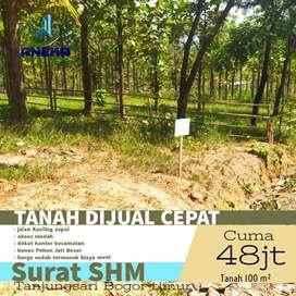 Dijual Tanah Kavling Jati Emas Di Bogor Promo