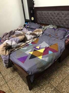 Diwan kum bed