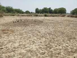 Gram mohipur tehsil narval