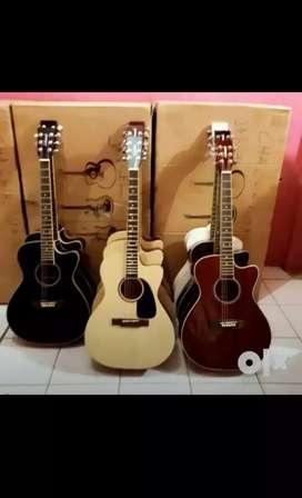 Only buy guitar hoolsel price