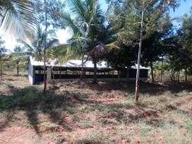 1 farm house, 3 borewel. 1 sed new 20x50.
