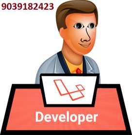 I M laravel/Wordpres Developer 6 yr of exp, in:- CMS, ERP, Ecommerce