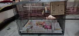 Big & Small Cages on Sell