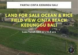 Land For Sale Ocean & Rice Field View Cinta Beach Kedunggu Bali