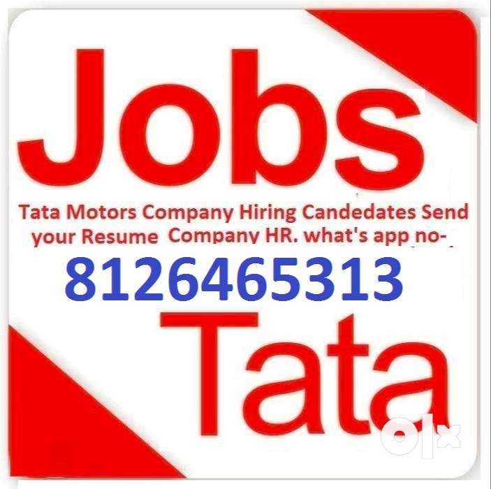 Jobs in submit your Resume company (HR) what's app no  81264,65313 0