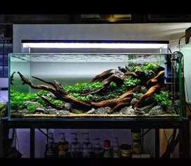 Aquascape/jasa setting