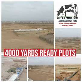 Areesha Cattle Farm 4000Yards Ready Plot  Near Bahria Town Karachi