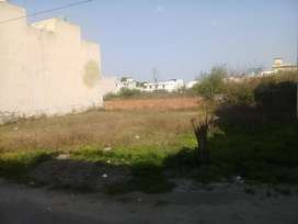 14x65 showroom/ plot at 66 ft road in just 45 lacs