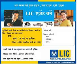 Do You Want Part Time Job in Ludhiana ?