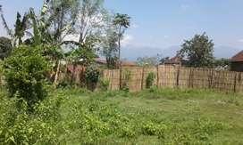 tanah prospek KAMPUS (BST)