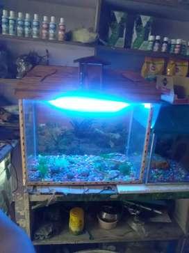 Aquarium sale 25 ×14