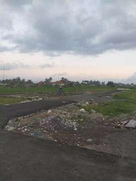 Dijual Tanah Kavling baru Area Celuk Sukawati