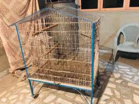 Raw parrot cage