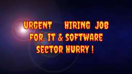 Urgent requirement  of BDM  & Marketing  executive FOR IT COMPANY