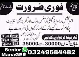 Male /Female Required for online marketing and data typing jobs
