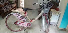 New stylish bicycle