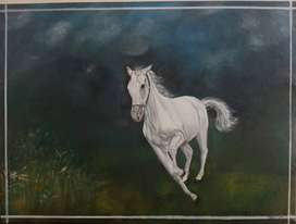 Acrylic painting of a beautiful white Horse