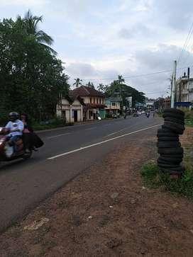 40 Cent Road Facing land in Bekal