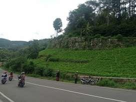 Tanah Raya Sarangan Magetan Jawa timur