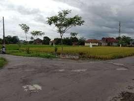 Tanah Sawah HOOK Sidokarto Godean