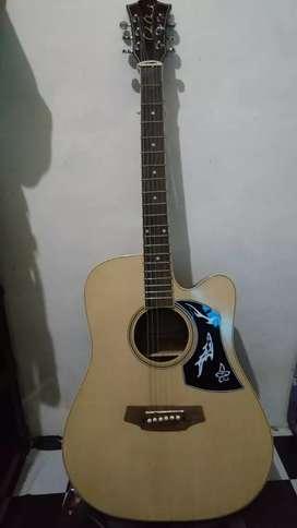 Gitar costum Cole clack