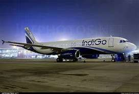 indigo Airlines Opened a many vacancy for freshers nd experiences cand